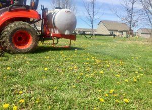 Spraying Dandelions - Peoria Lawn Maintenance Team Equipment